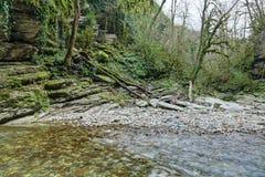 Psakho flod Royaltyfri Bild
