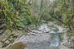 Psakho flod Arkivbilder