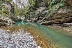 Psakho flod Arkivbild