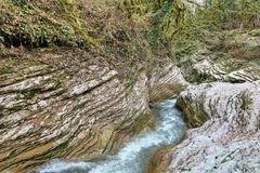 Psakho flod Royaltyfria Bilder