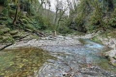 Psakho flod Arkivfoton