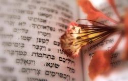 Psalmhintergrund Stockbilder