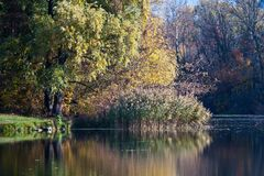 Psel河在秋天 库存图片