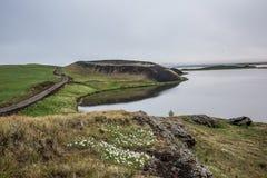 Pseudocraters nel lago Stakholstjorn Myvatn, Islanda Fotografie Stock Libere da Diritti