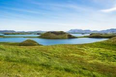 Pseudocraters på Skutustadir den omgeende sjön Myvatn, Island Fotografering för Bildbyråer