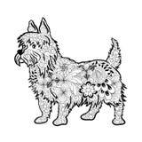 Psi doodle Zdjęcie Stock