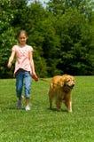 psi dziewczyn young Zdjęcie Royalty Free