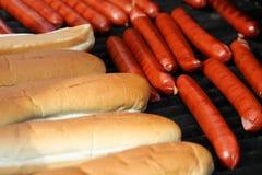 psi gorąco zdjęcia stock