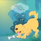 Psi i kość Zdjęcia Stock