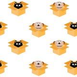 Psi inside otwierający kota pakunku kartonowy pudełko Szczeniaka kundla figlarki kota przyglądający up Bezszwowy Deseniowy Opakun Obrazy Stock