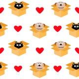 Psi inside otwierający kota pakunku kartonowy pudełko Szczeniaka kundla figlarki kota przyglądający up Czerwony serce Bezszwowy D Obraz Royalty Free