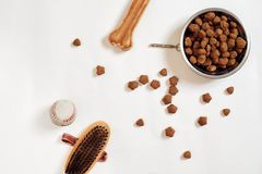 Psi jedzenie w kruszcowym pucharze i akcesoriach na białym tle obrazy stock