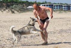 psi mężczyzna Fotografia Royalty Free