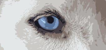 Psi niebieskie oko wektory Obrazy Royalty Free