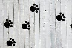psi odcisk stopy Zdjęcia Stock