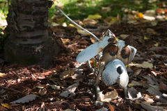 Psi Ogrodowy ornament Obraz Stock