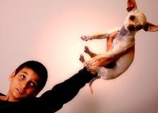 psi poświęcić obraz royalty free