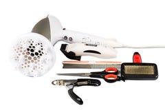 Psi przygotowywać narzędzia, akcesoria ustawiający i obraz stock