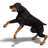 psi rottweiler royalty ilustracja