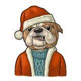 Psi Santa Claus w kapeluszu, żakiet Szczęśliwy nowego roku literowanie ilustracji