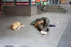 Psi sen obok bezdomnego mężczyzna na nożnej ścieżce w biznesowym terenie Obrazy Stock