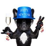 psi szczęśliwego nowego roku obraz royalty free