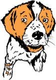 psi szczeniak ilustracyjny Zdjęcia Royalty Free
