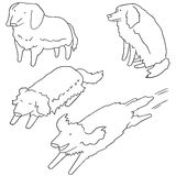 psi złoty aporter royalty ilustracja