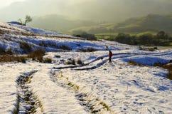 psia śnieżna szlakowa kobieta fotografia royalty free