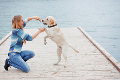 psia dziewczyna zdjęcia stock