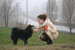 psia dziewczyno Fotografia Royalty Free