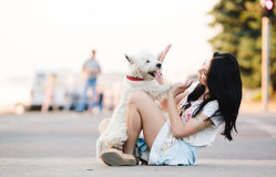 psia dziewczyno ją Obrazy Stock