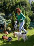 psia dziewczyno trawnika wnioskodawcy, mała Obrazy Royalty Free