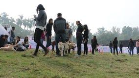 Psia kochanek odświętność & cieszyć się zwierzę domowe Karmiliśmy jarmark zbiory