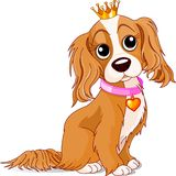psia królewskość Zdjęcia Royalty Free
