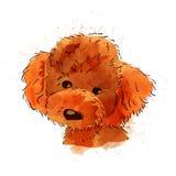 Psia ręka malująca akwareli ilustracja odizolowywająca ilustracji