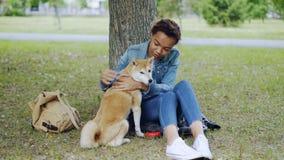 Psia właściciela amerykanina afrykańskiego pochodzenia dziewczyna relaksuje w parku w lecie jest żywieniowym shiba inu szczeniaki zbiory wideo