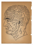 Psicologia ou ilustração médica da cabeça masculina Fotografia de Stock Royalty Free