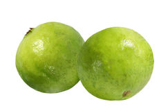 Psidium guajava Royalty Free Stock Images