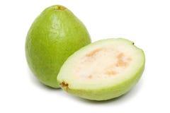 psidium guava guajava Стоковая Фотография RF
