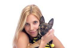 psie chihuahua ręki trzymają małej kobiety Fotografia Stock