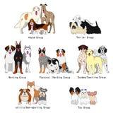 Psie traken grupy ilustracji