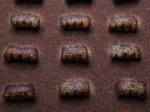 Psiego jedzenia ilości pracowniany światło Obrazy Royalty Free