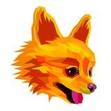 Psiego spitz szczeniaka trakenu zwierzęcego wektorowego ilustracyjnego ślicznego zwierzęcia domowego śmieszny przyjaciel ilustracji