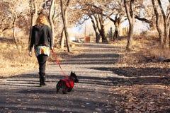 psiego szkockiego teriera chodząca kobieta Obrazy Royalty Free