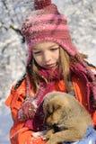 psiej dziewczyny psi bawić się Obraz Royalty Free