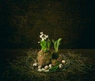 Påskplats med ägg och blomman Arkivfoto