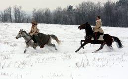 Psovy hunting royalty free stock photo