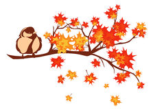 Pássaro do outono Imagem de Stock Royalty Free