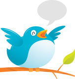 Pássaro gordo do Twitter Fotografia de Stock Royalty Free